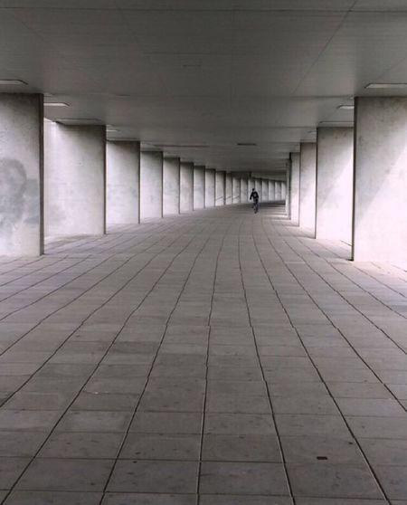 Architecture Built Structure Art Architectural Column Nai  Rotterdam Rotterdam Architecture Rotterdaminthepicture