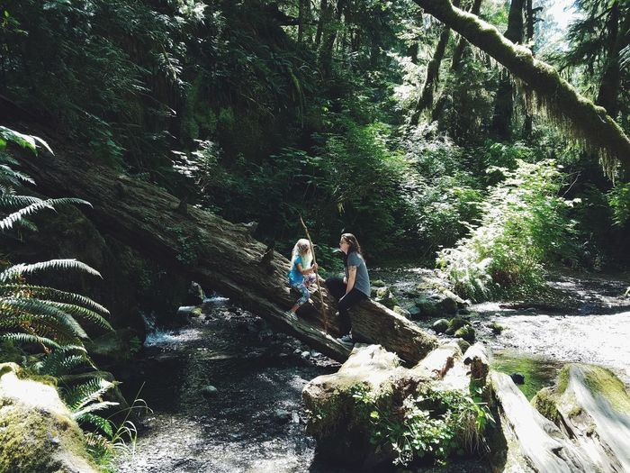 Real People High Angle View Day Nature Outdoors Lifestyles Leisure Activity Tree Two People Water Growth Shadow Togetherness Beauty In Nature Forest Full Length People Adult Child Girls Quinalt Rainforest Merriman Falls EyeEm Selects Breathing Space