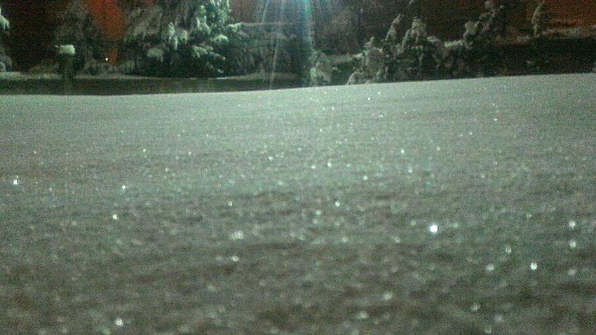 Nature Winter Türkiye Konya Kış Day Konya Turkey Trees Beauty In Nature Snow Day Snow Snow ❄