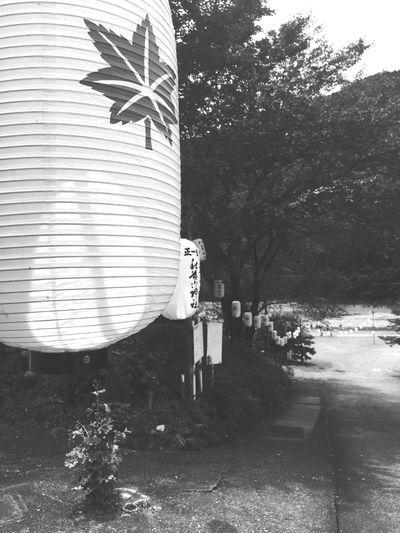 Shrine Japan 秋葉神社 秋葉山 Landscape Landscape_photography Shades Of Grey Black And White Black & White Monochrome