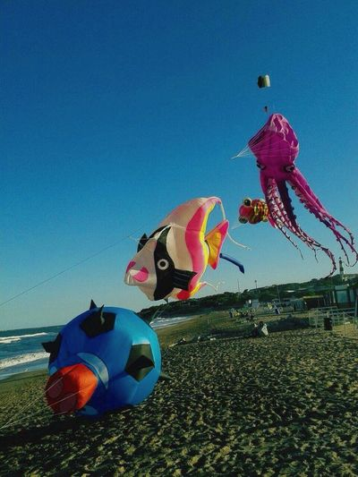 EyeEmSelect Cerf Volant Barrilete Gigante Beach Blue Clear Sky Day Outdoors Celebration Sea Multi Colored Sand Nature Sky No People