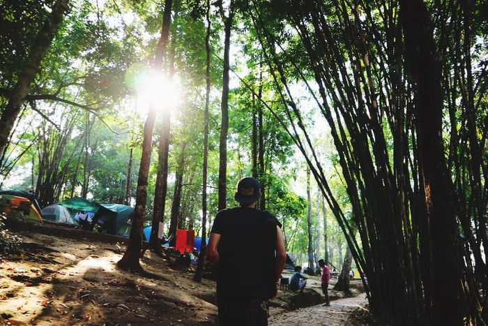 Live For The Story Tree Nature Forest Real People Men Travel Outdoors Lifestyles Thailand Canon Canoneosm3 The Great Outdoors - 2017 EyeEm Awards
