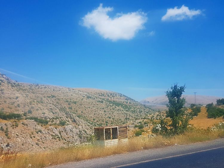 Agriculture Sky Cloud - Sky No People Tree Road Landscape Outdoors Day Rural Scene Scenics Nature Beauty In Nature Köy Landscapes Landscape_Collection EyeEm Best Edits