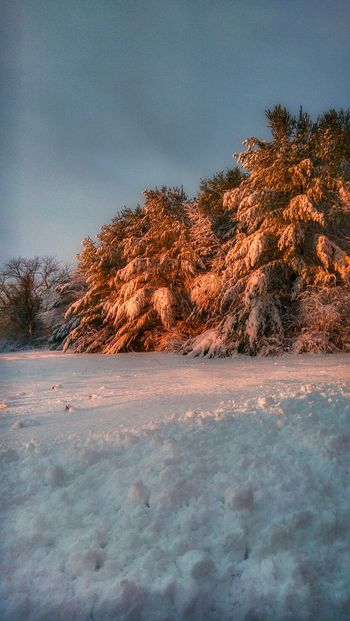 First Light... Mainephotographer Mainephotography Mainethewaylifeshouldbe Maine Scenery Cold Temperature Newenglandphotographer NewEnglandWinter Snowscape Snowfall Snow Covered