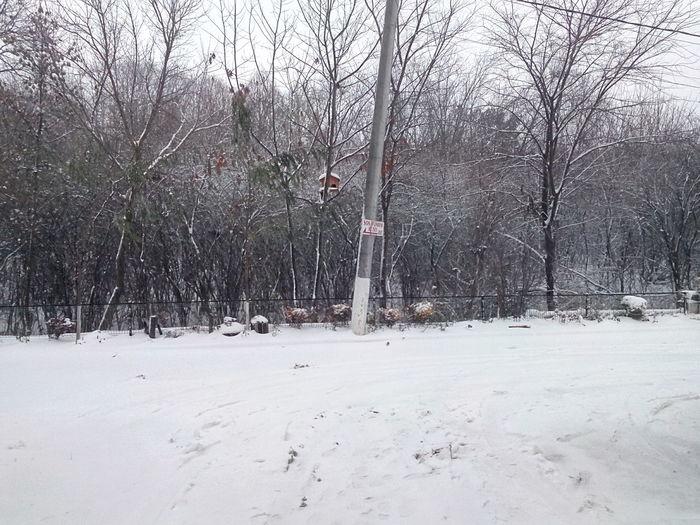 Winter in Bucharest ; Snow
