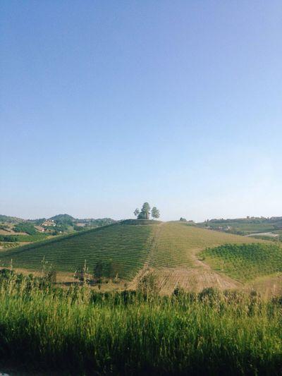 Roero, Piemonte, Italy