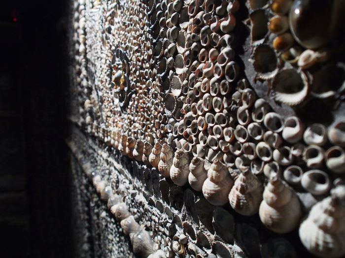 Picture of one of the walls within Shell Grotto. Located at Margate on Kent, UK. Shell Grotto