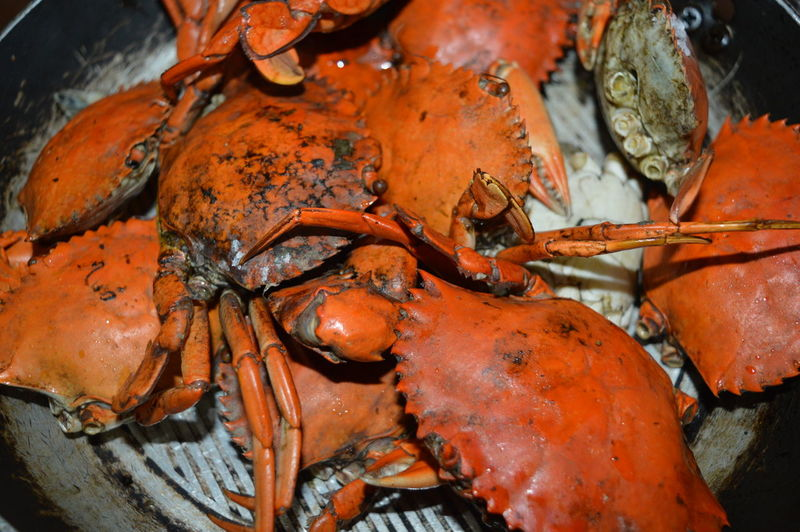 High Angle View Of Crabs In Cooking Pan