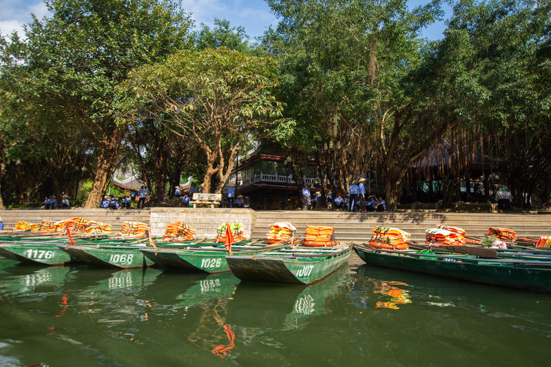 travel at Trang An, Ninh Binh, Vietnam Tree Water Nautical Vessel Transportation Plant Mode Of Transportation Nature Waterfront Day Moored Incidental People Reflection Group Of People Outdoors Sunlight Growth Beauty In Nature Tranquility Canal