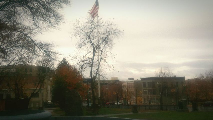 The flag waves high over Schenectady today in honor of those who served