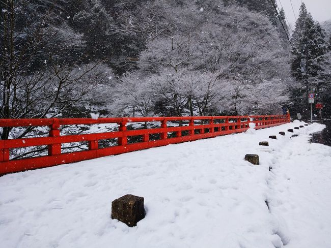 1.23white and red Snow Winter Bridge Kifune Shrine Stone Whiteandred