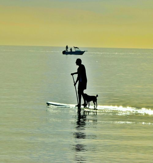 Silhouette Man And Dog In Paddleboard On Sea Against Sky