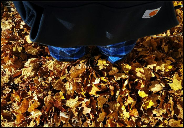 Drowning In Leaves 😨🍁🍂🍃 Current Situation Ahhh So Many Of Them Leaves Up To My Knees Least My Hoody Game Is Strong😎 Trying To Keep My Sense Of Humor Happy Monday All Leaves Blue Portrait Of A Woman Women Power Girl Power Fall Autmun Colors People Woman