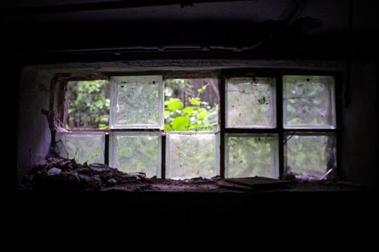 Ghost Amazing Architecture Built Structure Canon Canon_photos Canonphotography Close-up Creative Creepy Day Eye4photography  Home Interior Indoor Photography Indoors  Indoors  Inspiring Nature No People Old Old Buildings Spooky Tree Window Windows