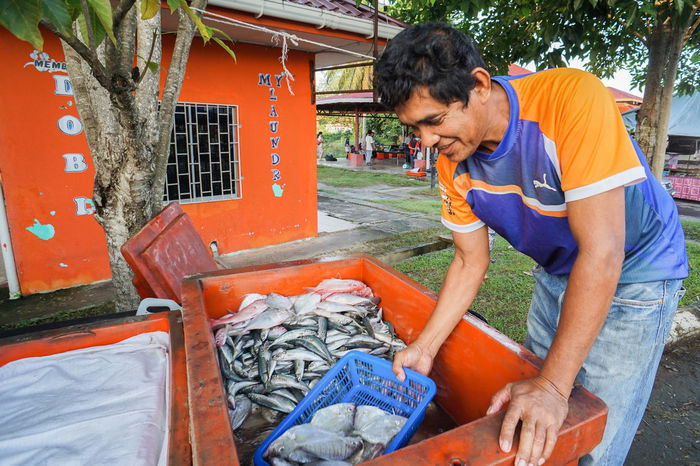 Pimping,Sabah-Oct 30,2016:Fishmonger preparing variety type of fish ready to sale at an open retail fish traditional market at Pimping,Sabah,Borneo on 30th Oct 2016. Fishermanslife Fishing Fishmonger Fishmonger's Shop Fishmongers Food Happy Market People Protein Raw Raw Food Sabah Borneo Sabah Malaysia Small Business Tamu