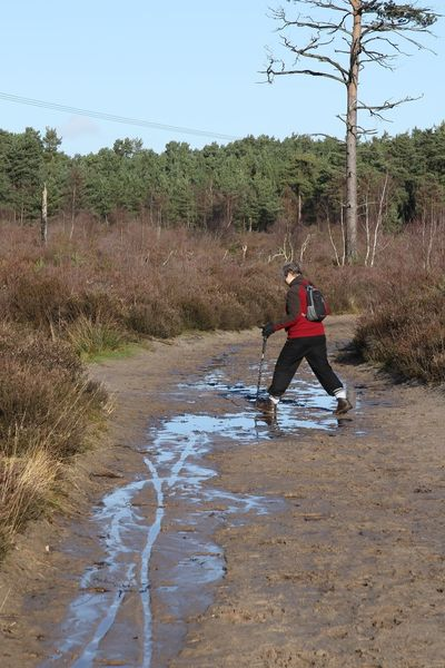 Footprints Hiking Surrey Thursley Common Beauty In Nature Day Full Length Lifestyles Nature One Person Outdoors Outdoors Photograpghy  Puddle Real People Sand Sky Track Tree Walking Water