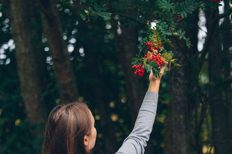 Rear View Of Woman Touching Berries Growing On Tree