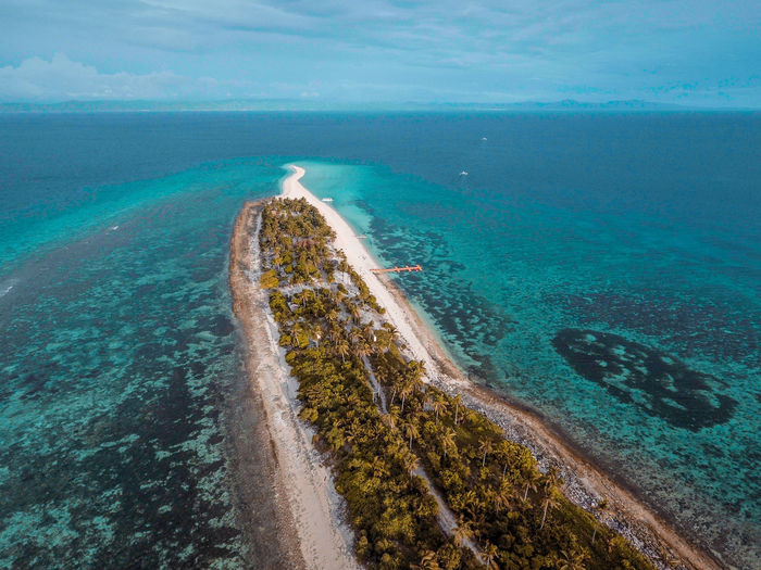 Eyeem Philippines Beach Sandbar White Sand Island Nature Environment Coconut
