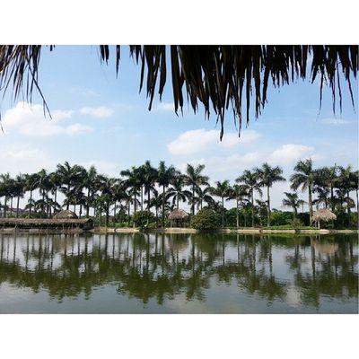 Ngày nắng chói Sunnyday Vietnam Beautiful Place Countryside Suburb
