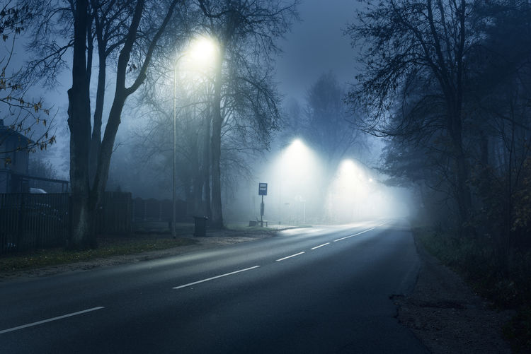 Road by trees in city during foggy weather