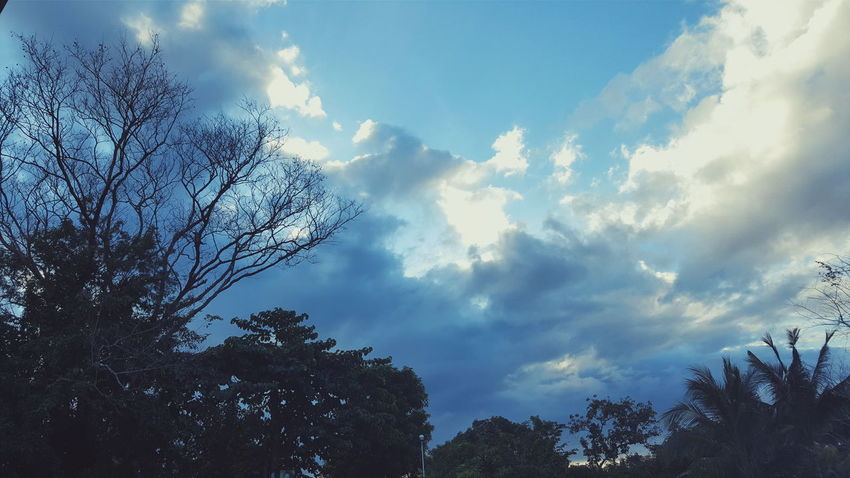 Sky VSCO Vscocam Vscophilippines Philippines Showcase: January Nature Nature Photography Taken with Samsung Galaxy S6 Edge+.