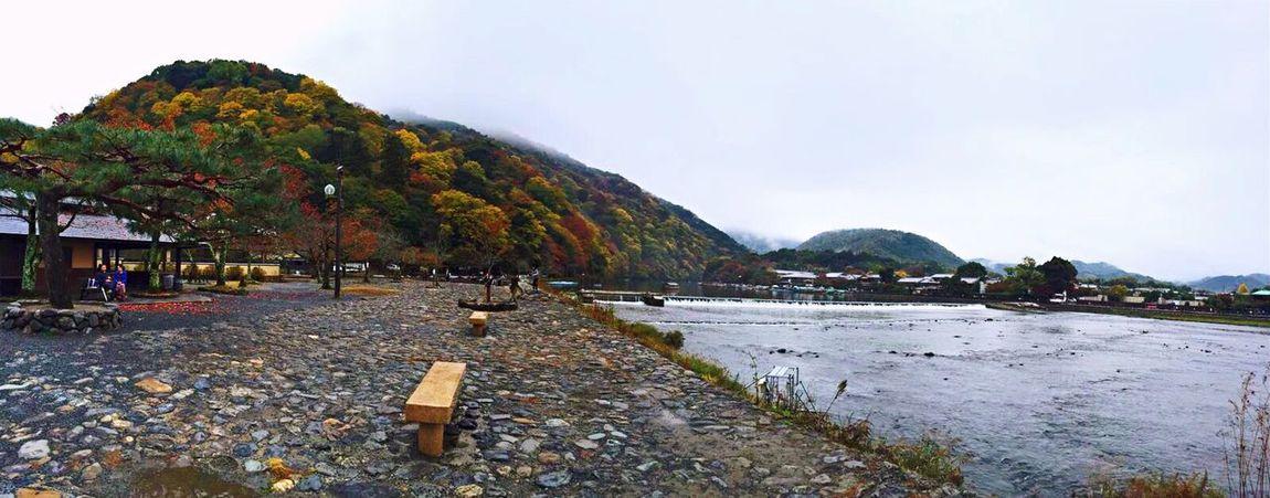 Travel Travelling World Kyoto Japan Arashiyama Beautiful Beautiful Nature Nature Cloudy Rainy Days Must Must See Ultimate Japan