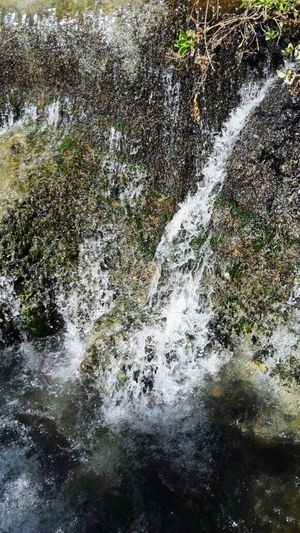 الساخنة גן השלושה Summer Water Nature Israel بيسان בית שאן