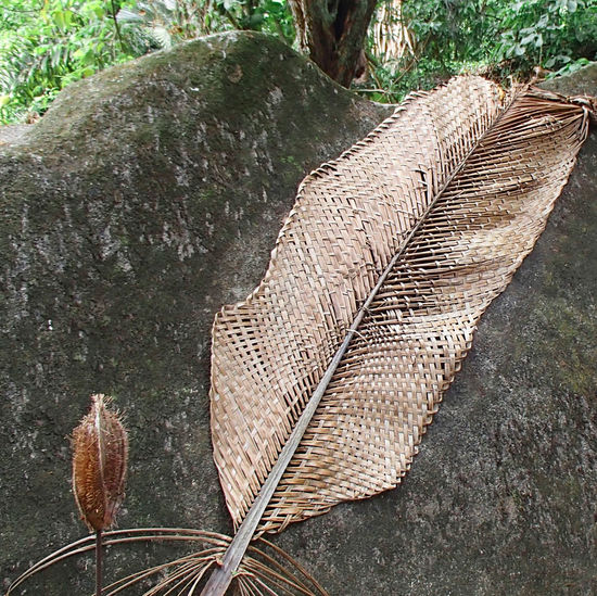 A dried plants hand woven palm leaf the size of a grown man leaning against a granite rock in the seychelles Grown Palm Palm Leaf Seychelles Art Beauty In Nature Close-up Day Granite Rock Hand Made Hand Woven Leaf Nature No People Outdoors Pattern Plain Plain Art Structure Tree Woven