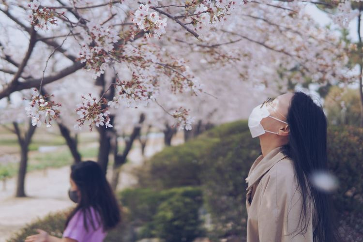 Rear view of woman with pink cherry blossoms in park