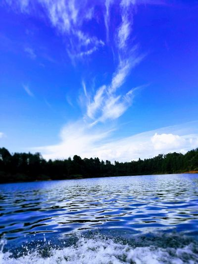 Water Tree Blue Lake Mountain Forest Summer Reflection Sky Landscape Pine Tree