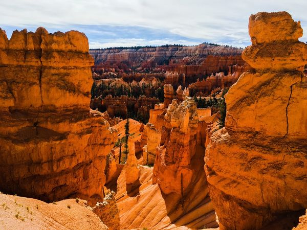 USA 43 Golden Moments Bryce Canyon Bryce Canyon National Park Scenery Scenic Mountain Beauty In Nature Landscape Landscapes Scenics Rocks Nature Arid Climate Scenic View Mountains Extreme Terrain Glowing Fine Art Photography Colour Of Life