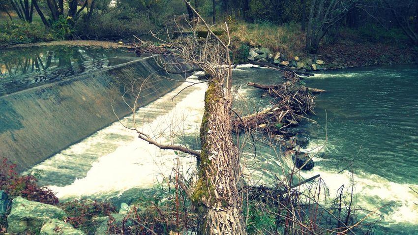 Made by Sony Xperia M4 Aqua Autumn Dam Felsőcsatár River Road Rockwall Tree Trees Vas County Vas Megye Village Woods