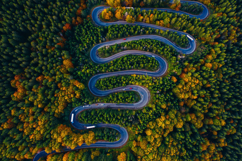 Aerial view of winding road amidst trees in forest