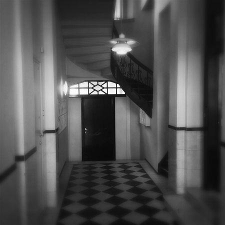 Interior NEM Architecture NEM Black&white