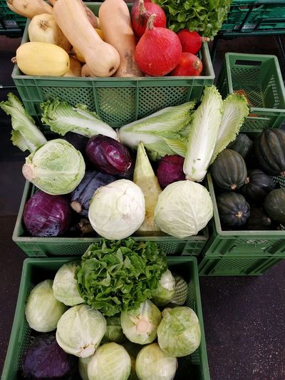 Kohl Raw Food Cabbage Red Cabbage White Cabbage Pumpkin In A Box No People Farmer Market Farmers Market Market Stall Vegetable Variation High Angle View Close-up Food And Drink Street Market For Sale
