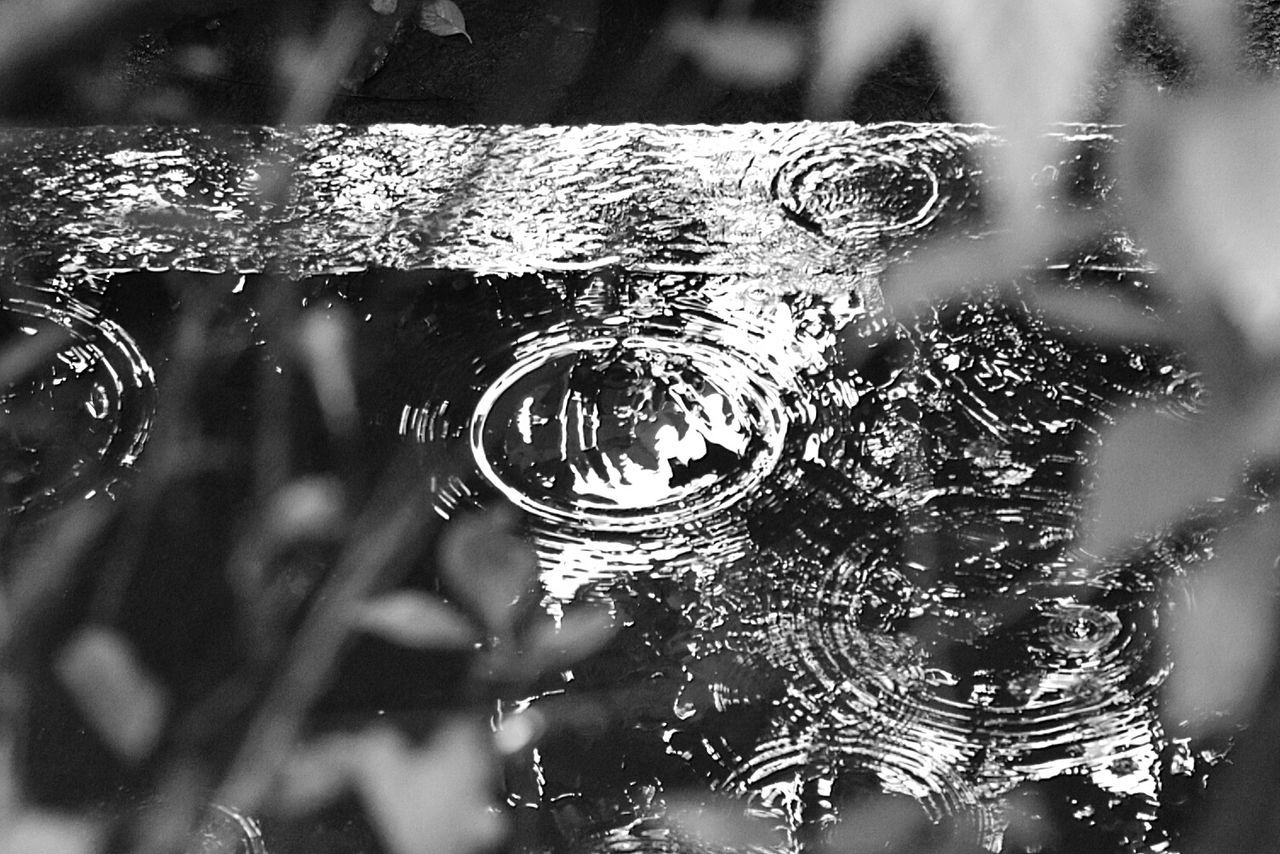 circle, no people, close-up, day, bubble, focus on foreground, water, outdoors, nature, fragility