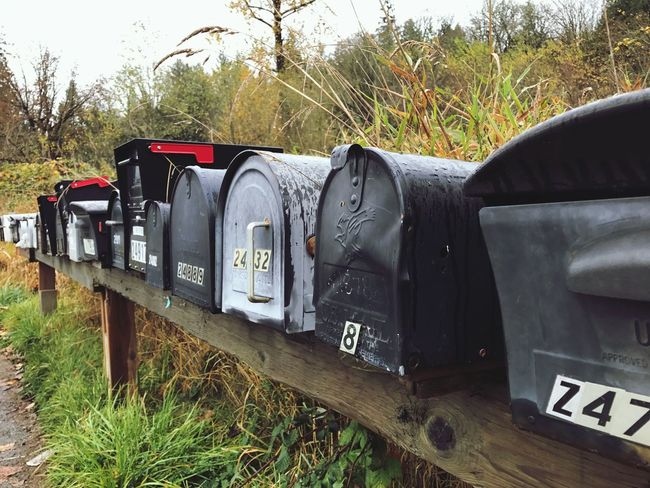 Mailbox Mail Communication Public Mailbox Tree Grass Day Outdoors Recycling No People Nature Text Sky