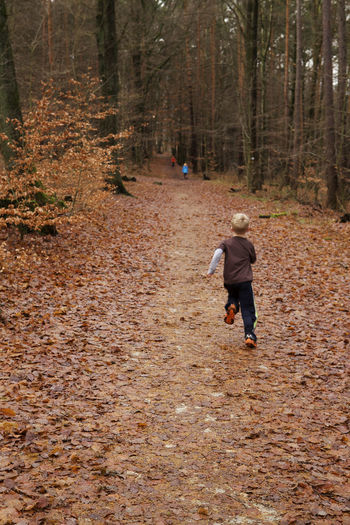 Run! Children Run Running Autumn Beauty In Nature Child Children Playing Day Forest Full Length Leaf Leisure Activity Nature One Person Outdoors People Real People Rear View The Way Forward Tree Tree Trunk Walking