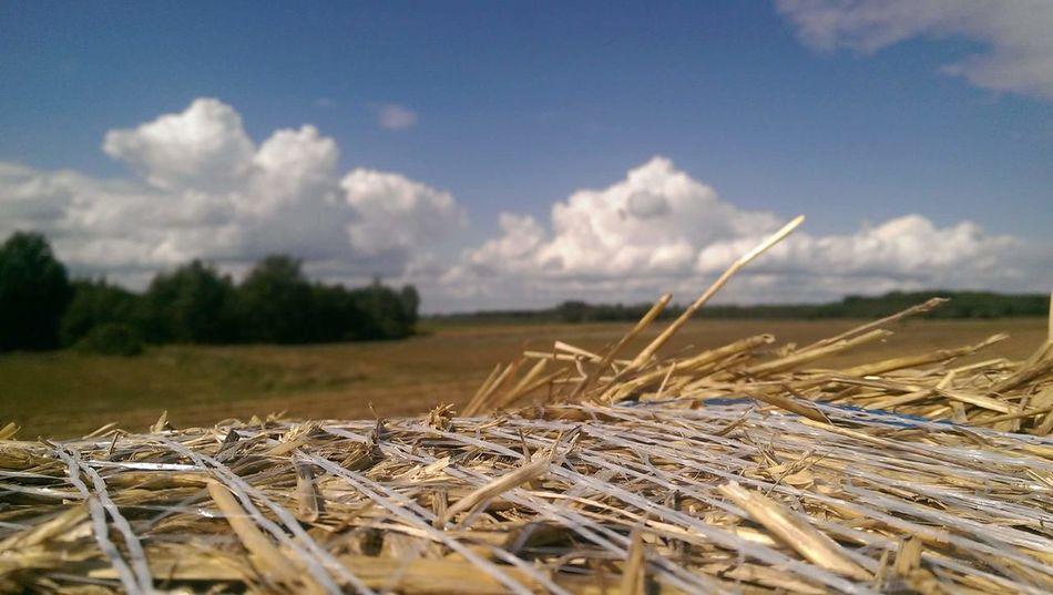 Straw Sky Cloud - Sky Outdoors No People Field Poland Kolonia Liszna Poland Village Polska