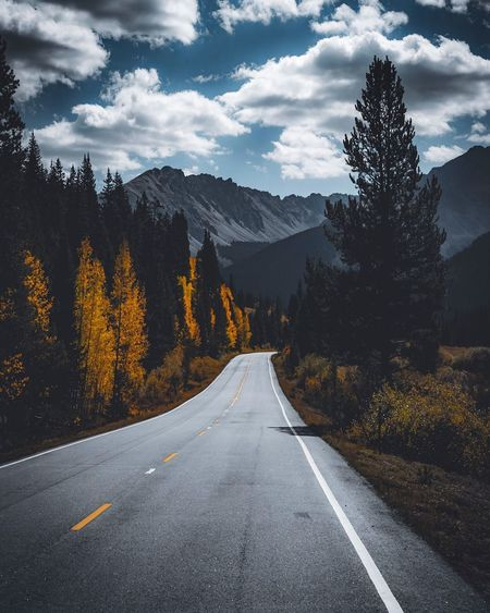 Independence Pass Summer Colorado Aspen Fall Beauty Fall Road Tree Road Plant The Way Forward Direction Transportation Sky Nature Mountain Cloud - Sky Beauty In Nature Scenics - Nature Tranquil Scene
