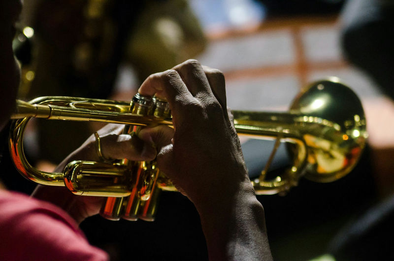 Music Musical Instrument Arts Culture And Entertainment Human Body Part Adult People Only Men Leisure Activity Playing Musician Performance Adults Only One Man Only Men Indoors  Human Hand One Person Wind Instrument Close-up Young Adult
