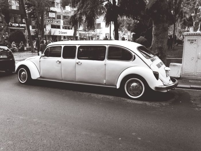 Turtle Tosba Woswos Hello World IPhoneography Black And White Limousine Car