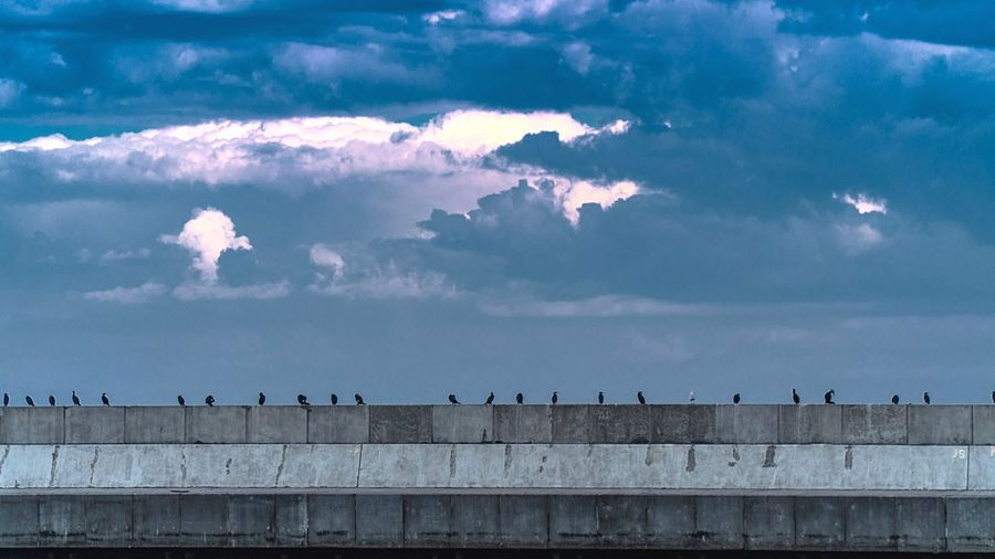 Distant view of birds perching on retaining wall against cloudy sky