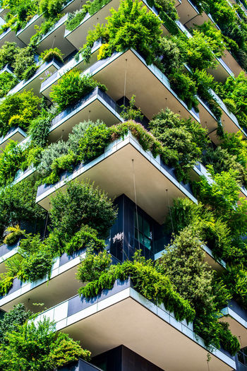 Vertical Forest - Bosco Verticale - building designed by Stefano Boeri architects Milan Italy Boscoverticale Milan Vertical Forest EyeEm Gallery Eye4photography  Milano Skyscrapers City The Week On EyeEm Milano Italy Archilovers Skyscraper Milan Travel Destinations Skyscraper Modern Low Angle View Built Structure Building Exterior Architecture EyeEm Selects