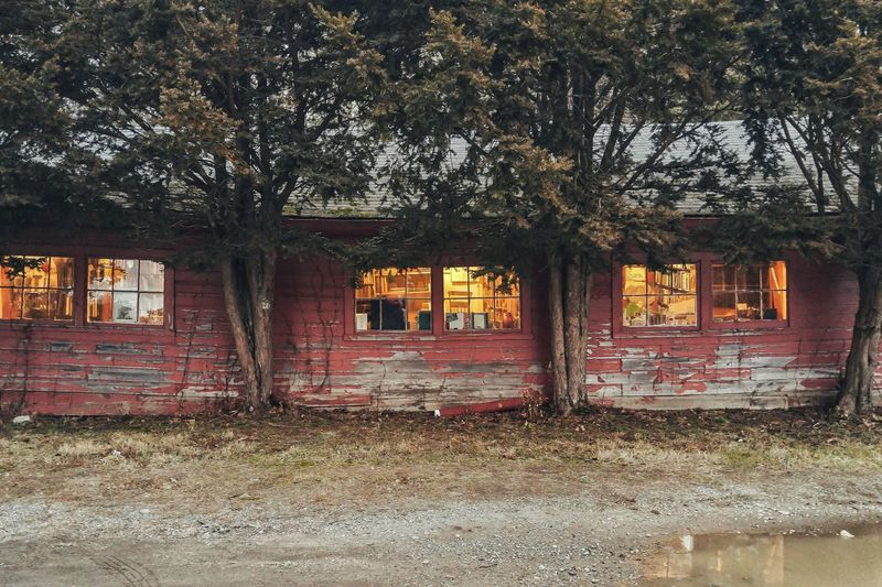 Peeling paint. Architecture Outdoors Built Structure Building Exterior Tree Nature No People Peeling Paint Barns Red Paint Deterioration Shabby Chic New England  Connecticut