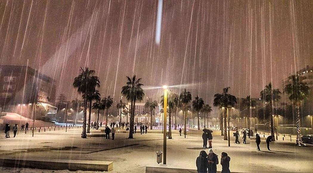 Durres Durres Albania Durresi City Life City Night Snow Winter January Bashkiadurres Albania Shqiperia Shqiperi Like Like4like Follow Tree Palm Tree Illuminated City Sky People Outdoors Large Group Of People Beauty In Nature Nature Adults Only Milky Way Adult EyeEmNewHere