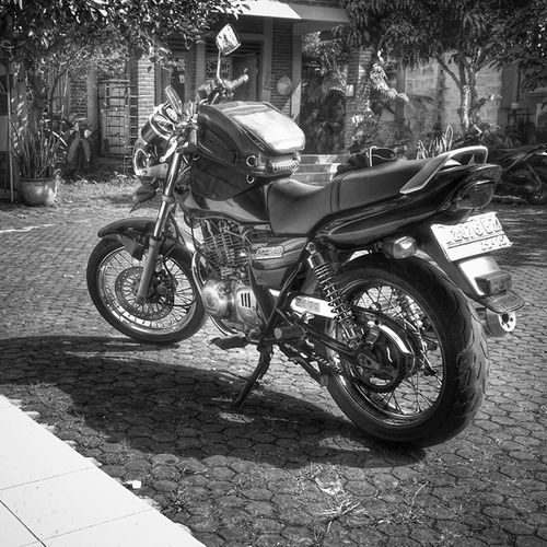 Suzuki Thunder250indonesia Thunder250 Gs250 gsx250 bike motorcycle bw