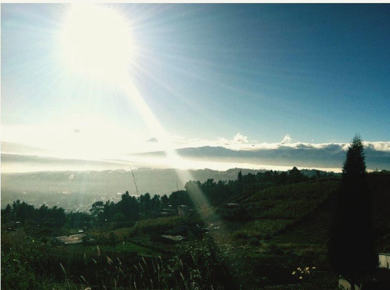 sunbeam, sun, nature, landscape, sunlight, no people, field, day, sky, beauty in nature, outdoors, tree