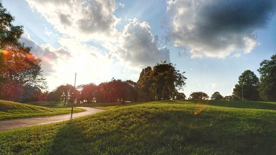 autumn sun Park