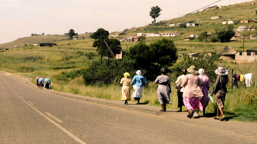 This group of proud women is returning home from a wedding in the northern east of South Africa. Africa Colorful Culture Ethnic Friendship Group Landscape Lifestyles On The Move On The Road Outdoors People Photography Real People Rear View Road Roadside South Africa Street Street Photography Walk This Way Walking Wedding Photography Weddings Around The World Weekend Activities Women